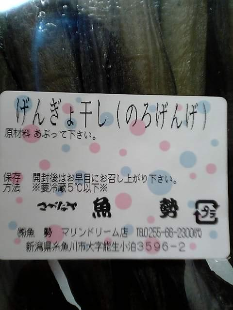 Photo_201